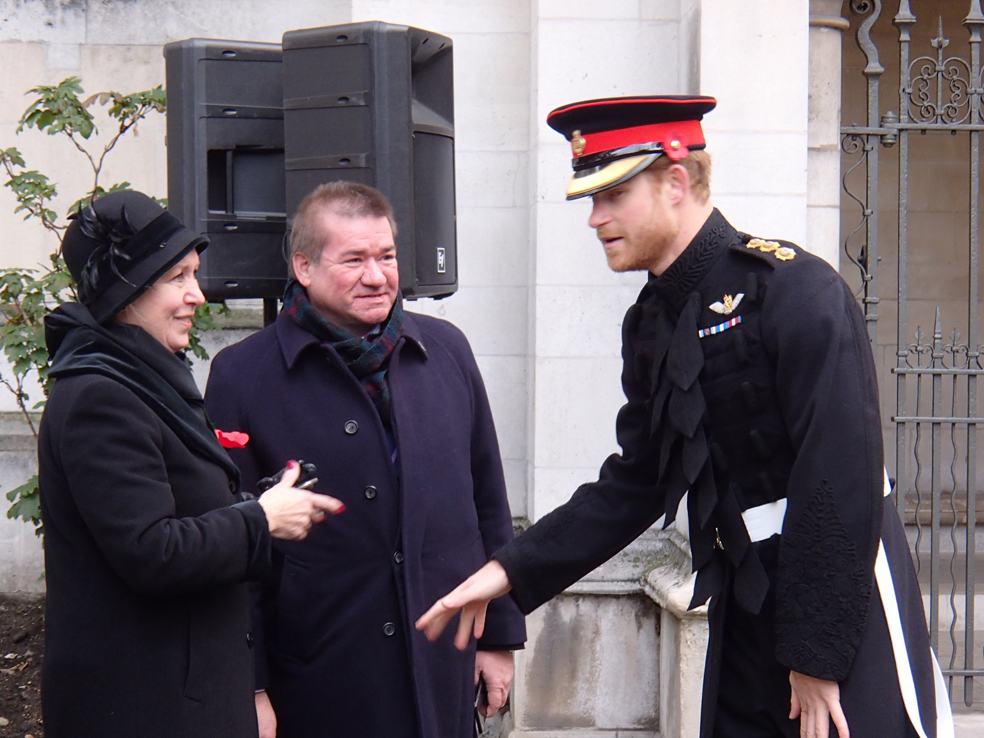 Meeting Prince Harry on Remembrance Day 2016